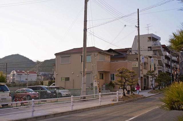 120310_earthquake_40