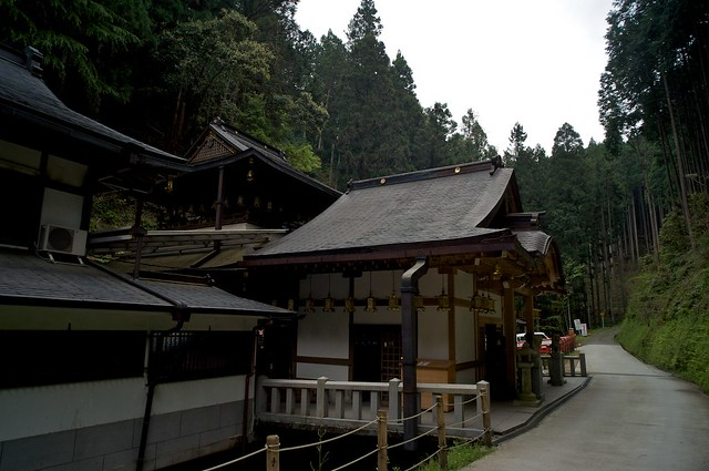 120430_yoshino10